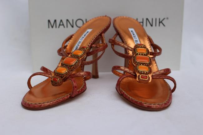 Item - Coral Snake Sandals Size US 8 Narrow (Aa, N)