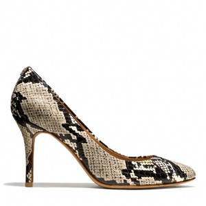 Coach Snake Pumps