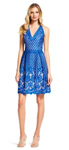 Adrianna Papell Lace Halter Fit & Flare Dress
