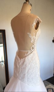 Lace Sexy Sheer Low Back Tulle Mermaid (brand New Never Worn) Wedding Dress
