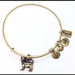 Alex and Ani Alex and Ani monopoly Cat expandable bangle