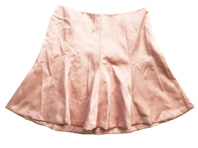 Preload https://img-static.tradesy.com/item/20000376/ann-taylor-shell-pink-heavy-crepe-gored-in-knee-length-skirt-size-petite-10-m-0-0-650-650.jpg