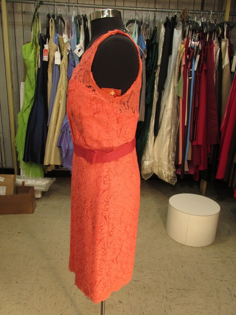 Watters Dress Image 3