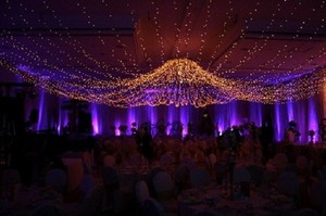 600 Romantic Reception Lights