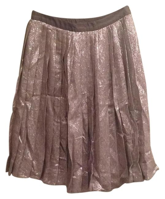 Preload https://img-static.tradesy.com/item/20063719/lela-rose-metallic-silverpewter-skirt-size-4-s-27-0-2-650-650.jpg