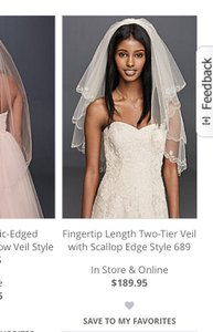 David's Bridal White Long Veil