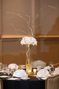 30 Glass Cylinder Center Pieces
