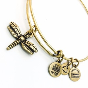 Alex and Ani Alex and Ani Dragon Fly bangle RG