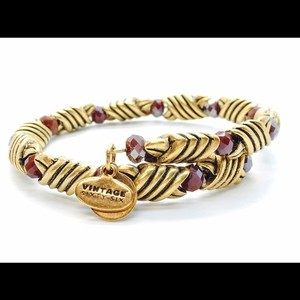 Alex and Ani Alex and Ani Forest's Blessing Wrap- Red Jasper RG