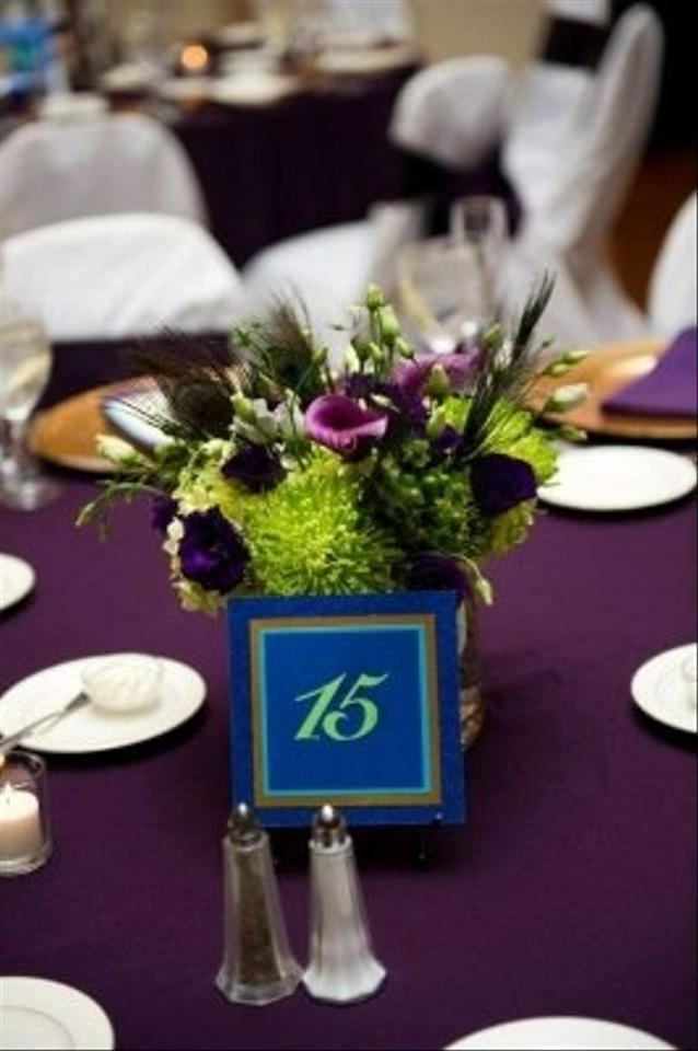 17 Eggplant Table Linens And 150 Eggplant Chair Sashes