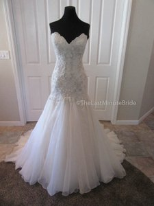 Maggie Sottero Ivory/Lt. Gold Lace & Organza Baxter 6mg800 Traditional Wedding Dress Size 10 (M)