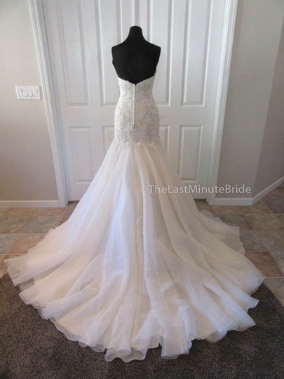 Maggie Sottero Ivory/Lt. Gold Lace & Organza Baxter 6mg800 Traditional Wedding Dress Size 10 (M) Image 3
