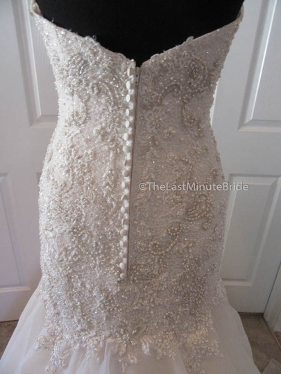 Maggie Sottero Ivory/Lt. Gold Lace & Organza Baxter 6mg800 Traditional Wedding Dress Size 10 (M) Image 5