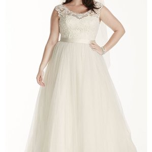 David's Bridal Never Worn Tulle Plus Size Wedding Dress With Lace Cap Sleeve Wedding Dress