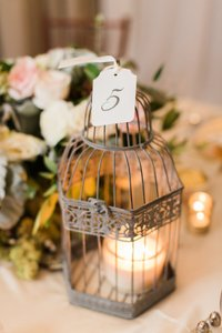 20 Gray Birdcage Lanterns - 2 Sizes!