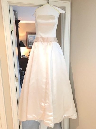 Amsale Shades Of Ivory Silk 5542668 Traditional Wedding Dress Size 6 (S)