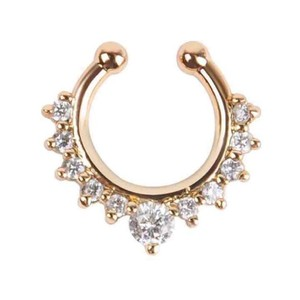 Nose Septum-gold Plated