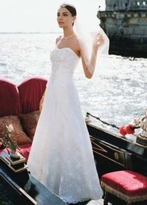 David's Bridal Allover Lace A-line Gown Wedding Dress