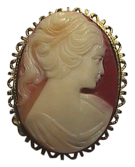 Vintage Gorgeous Cameo Brooch Image 0