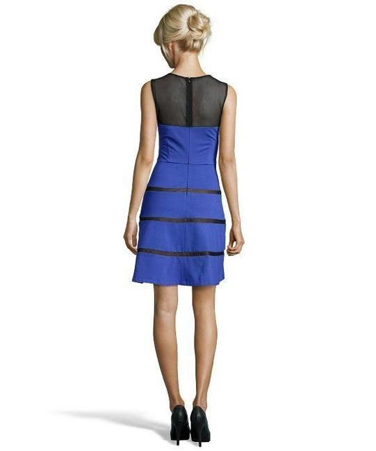 Erin Fetherston Fit And Flare Mesh Skater Skirt Dress Image 4