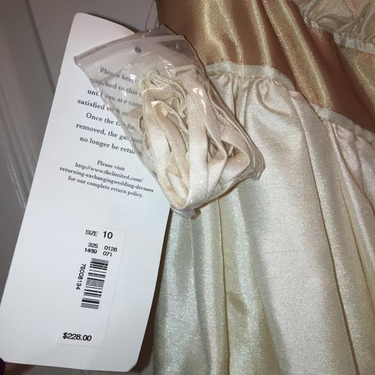 The Limited Off White Casual Wedding Dress Size 10 (M) Image 6