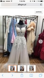 2 Piece Wedding Gown Wedding Dress