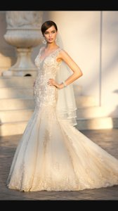 Essense of Australia Gold Full Beaded/Lace Stella York 5922 Feminine Wedding Dress Size 2 (XS)