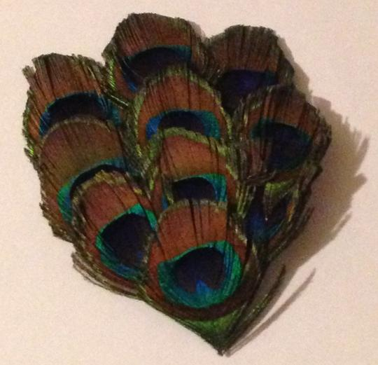 Handmade Peacock Feather Clip Image 4
