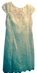 Adrianna Papell Lace Cap Sleeve Lined Dress