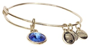 Alex and Ani Alex And Ani Energy Blue Stone Silver Tone Adjustable Charm Bracelet