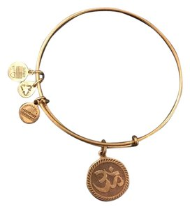 Alex and Ani Ohm bracelet
