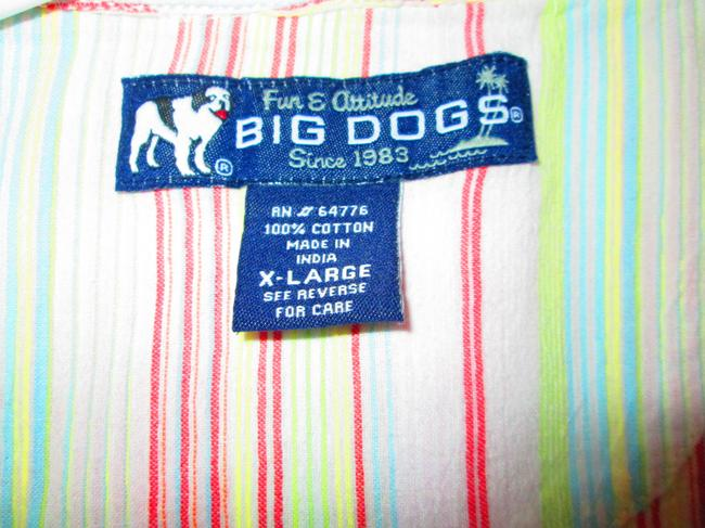 Big Dog Button Down Shirt white with multi colored strips