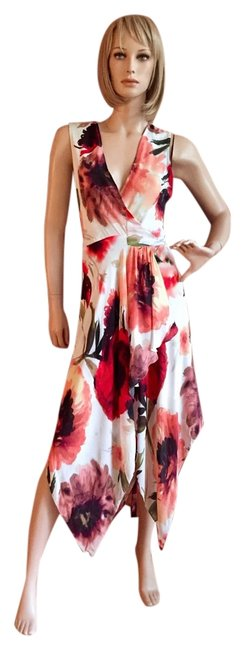 Haute Hippie Dress Image 0