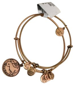 Alex and Ani Authentic Alex and Ani bracelet new