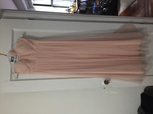 Blush Annabelle Dress
