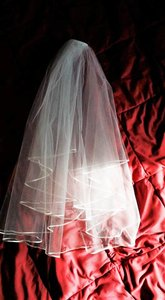 Ivory Veil With Silk Edging