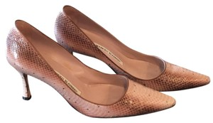 Manolo Blahnik Python Pink with Chocolate Pumps
