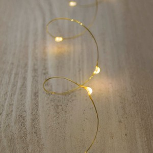 11 Gold Bridal Fairy Led Lights (gold Wire, 6ft, Warm White)