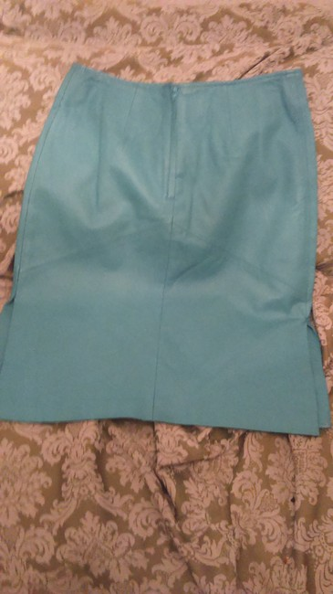 Other Skirt Blue Image 1