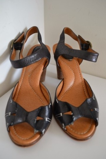 Fossil Sandals