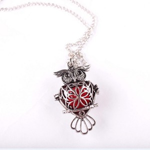Silver Bogo Free Owl Aromatherapy Oil Diffuser Locket Free Shipping Necklace