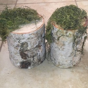 Mossy Birch Stump Decor