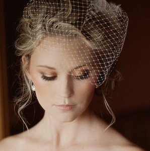 Giselle Bridals Giselle Birdcage Veil In Ivory
