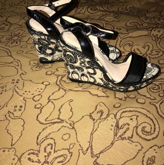 Coach Black and white Mules