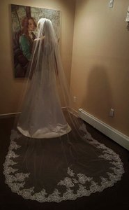 Gorgeous Lace Cathedral Veil Ith Comb White