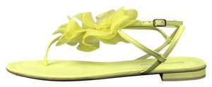 Gianvito Rossi Floral Sandals Yellow Flats