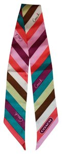 Coach BRAND NEW Coach Multicolor Striped Ponytail Scarf