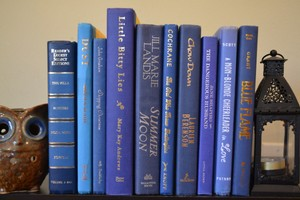 Vintage Style Books - Classic Blue - B370 - Set Of 10