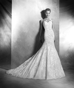 Pronovias Carezza Wedding Dress