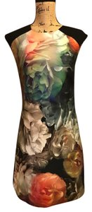 Ted Baker Floral Print Dress